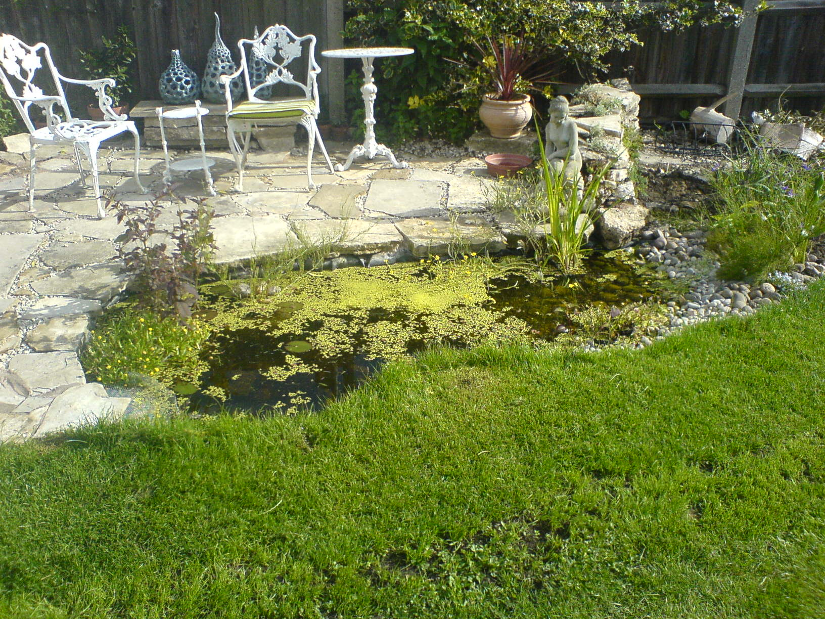 pond and landscaping around/patio/composition