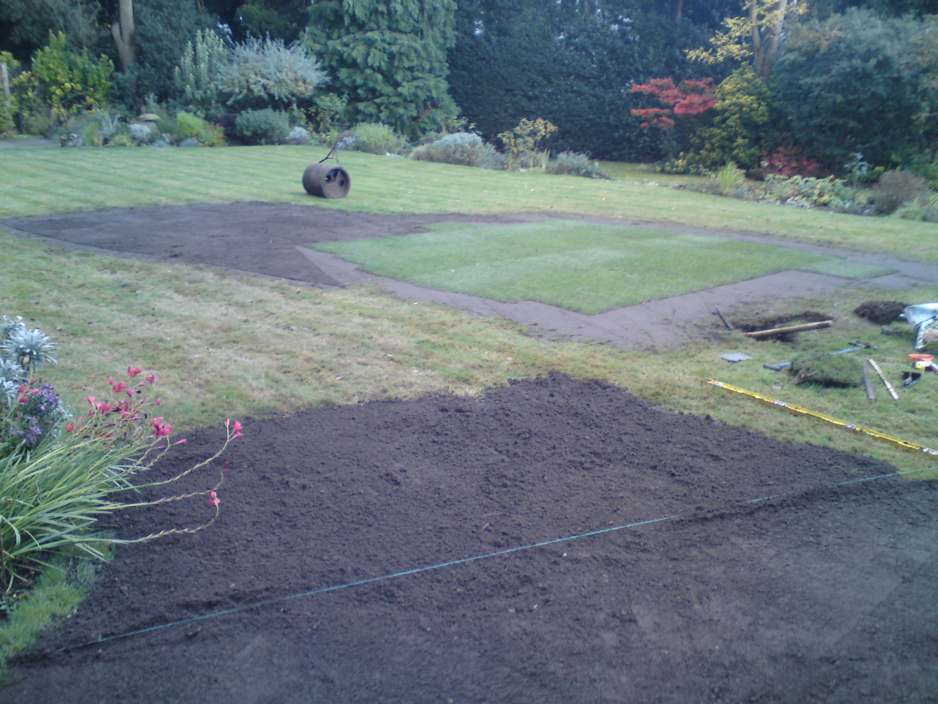 lawn repair and maintenance, Wimbledon common/park