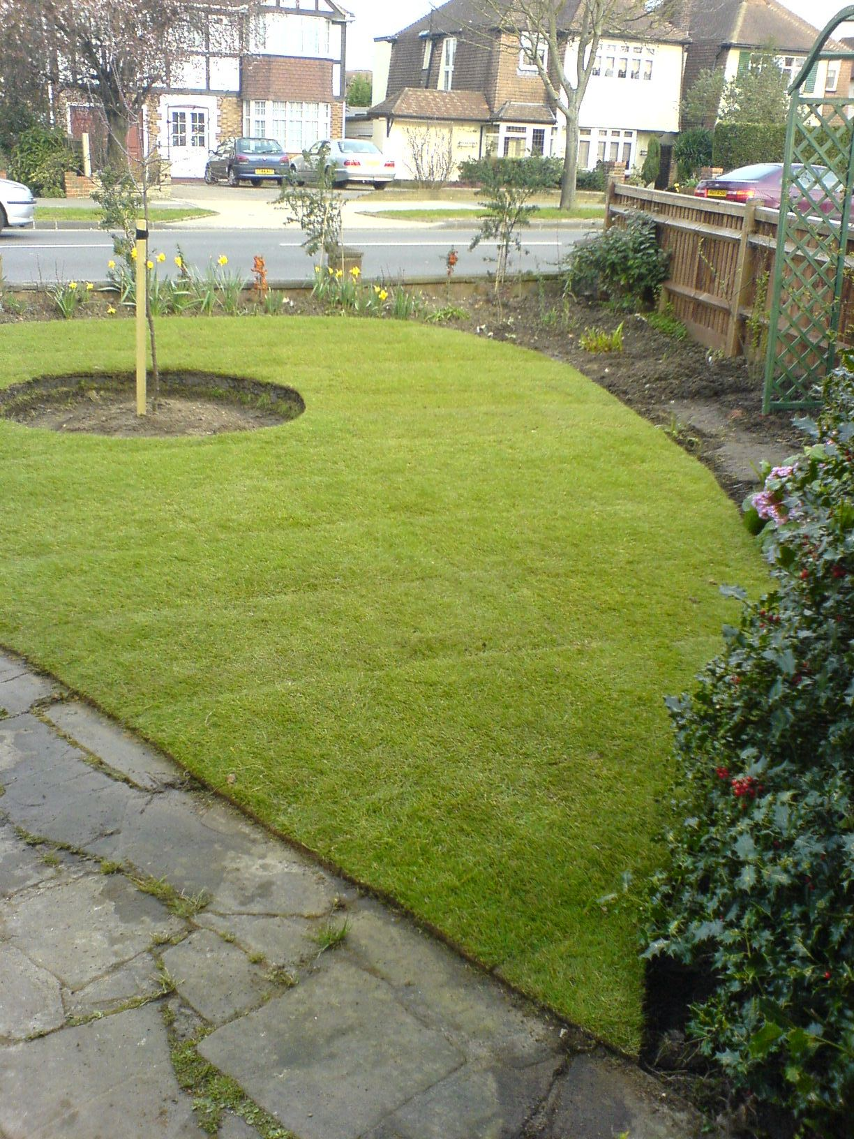 lawn after turfing 1