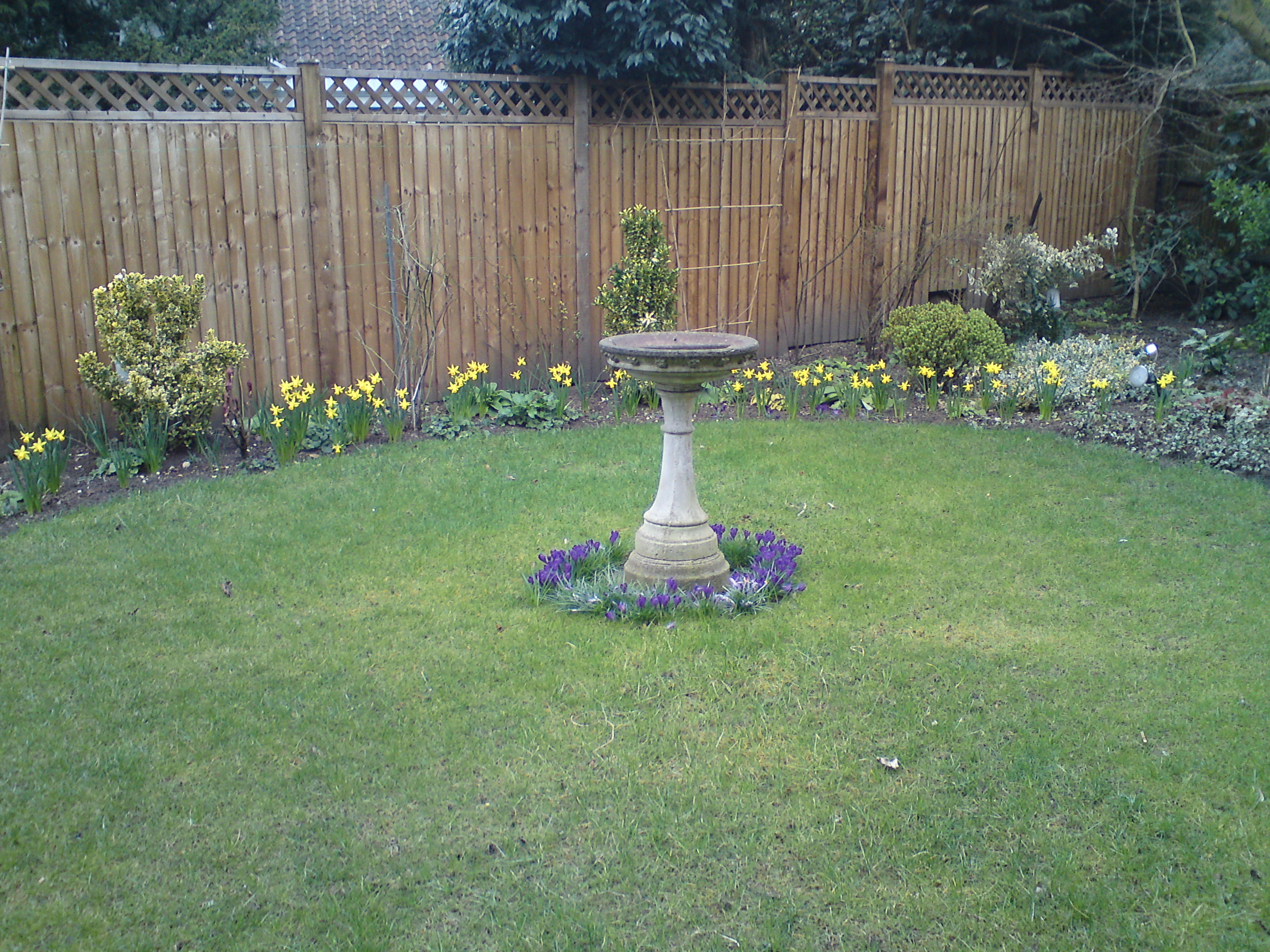 Lawn care total and professional by jhg for Professional garden maintenance
